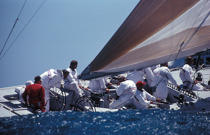 Regatta. © Philip Plisson / Pêcheur d'Images / AA05186 - Photo Galleries - America's Cup