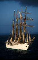 Manoeuvre sur l'Esmeralda. © Philip Plisson / Pêcheur d'Images / AA06047 - Photo Galleries - Tall ships