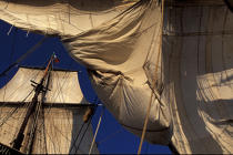 Carguer la toile. © Philip Plisson / Pêcheur d'Images / AA06564 - Photo Galleries - Tall ships
