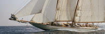 Eleonora pendant les Voiles de St Tropez 2004. © Philip Plisson / Pêcheur d'Images / AA08643 - Photo Galleries - Gaff schooner