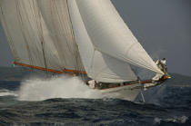 Eleonora during the Voiles of St Tropez. © Philip Plisson / Pêcheur d'Images / AA09818 - Photo Galleries - Gaff schooner