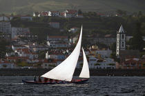 Whaling boat in Azores. © Philip Plisson / Pêcheur d'Images / AA10598 - Photo Galleries - Faial and Pico islands in the Azores