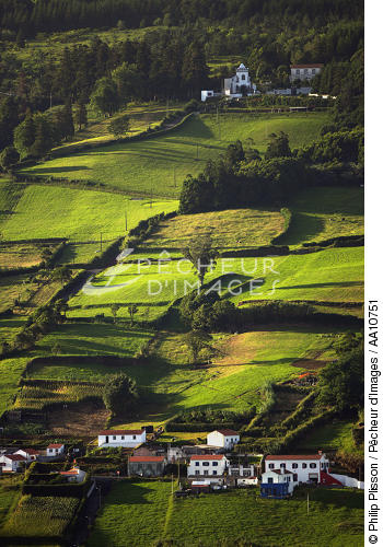 Countryside on Faial in the Azores. - © Philip Plisson / Pêcheur d'Images / AA10751 - Photo Galleries - Faial and Pico islands in the Azores