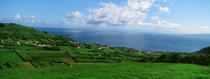 Faial Island in the Azores. © Philip Plisson / Pêcheur d'Images / AA10797 - Photo Galleries - Azores [The]