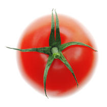 Tomato. © Guillaume Plisson / Pêcheur d'Images / AA10849 - Photo Galleries - Gourmet food