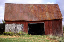 Old barn in Alma. © Philip Plisson / Pêcheur d'Images / AA11614 - Photo Galleries - Flora