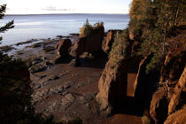 Bay of Fundy. © Philip Plisson / Pêcheur d'Images / AA11620 - Photo Galleries - Flora