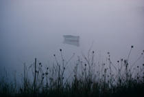Boat in the fog in the Gulf of Morbihan. © Philip Plisson / Pêcheur d'Images / AA11983 - Photo Galleries - Flora