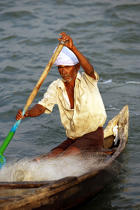Fisherman in Cochin. © Philip Plisson / Pêcheur d'Images / AA12607 - Photo Galleries - Fishermen of the world