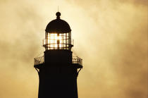 Montauk Point Light. © Philip Plisson / Pêcheur d'Images / AA13820 - Photo Galleries - American Lighthouses