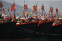 Fishing vessels in Aberdeen, Hong-Kong. © Philip Plisson / Pêcheur d'Images / AA14048 - Photo Galleries - Hong Kong, a city of contrasts