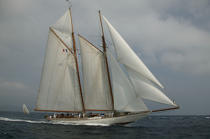 Eleonora during the Voiles de Saint Tropez © Philip Plisson / Pêcheur d'Images / AA15605 - Photo Galleries - Gaff schooner