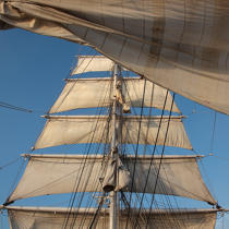 The Belem, all sails out. © Philip Plisson / Pêcheur d'Images / AA17635 - Photo Galleries - Sea decoration