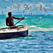 Fishing Malagasy © Philip Plisson / Pêcheur d'Images / AA17749 - Photo Galleries - Fishermen of the world