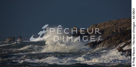 The wild coast of Quiberon - © Philip Plisson / Pêcheur d'Images / AA19641 - Photo Galleries - Morbihan