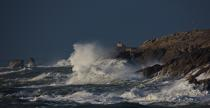 The wild coast of Quiberon © Philip Plisson / Pêcheur d'Images / AA19641 - Photo Galleries - Morbihan