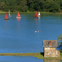 On the River of Auray © Philip Plisson / Pêcheur d'Images / AA20551 - Photo Galleries - Morbihan