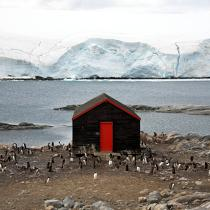 Port Lockroy in Antarctica. © Philip Plisson / Pêcheur d'Images / AA21912 - Photo Galleries - Antarctica