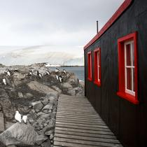 Port Lockroy in Antarctica. © Philip Plisson / Pêcheur d'Images / AA21913 - Photo Galleries - Antarctica