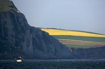 Cap Blanc-Nez © Philip Plisson / Pêcheur d'Images / AA23846 - Photo Galleries - From Dunkerque to la Baie de Somme