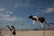 International Meetings of kites in Berck sur Mer [AT] © Philip Plisson / Pêcheur d'Images / AA28704 - Photo Galleries - Nord-Pas-de-Calais