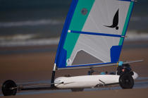Grand Prix Tanks sailing Omaha Beach [AT] © Philip Plisson / Pêcheur d'Images / AA28742 - Photo Galleries - Sand yachting at Omaha Beach