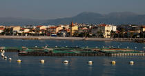 Marine farm at Cagnes-sur-mer © Philip Plisson / Pêcheur d'Images / AA32050 - Photo Galleries - From La Napoule to Menton