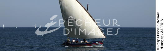 Lateen sail at Agde - © Philip Plisson / Pêcheur d'Images / AA32916 - Photo Galleries - From Cerbère to Adge