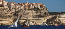 Bonifacio,Corsica © Philip Plisson / Pêcheur d'Images / AA36290 - Photo Galleries - From Lavezzi islands to Poticcio