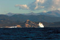 Corsica © Philip Plisson / Pêcheur d'Images / AA36303 - Photo Galleries - From Lavezzi islands to Poticcio