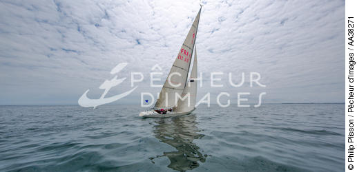 6 M JI World Cup 2015 in la Trinité sur mer - © Philip Plisson / Pêcheur d'Images / AA38271 - Photo Galleries - 6 M JI World Cup 2015 in la Trinité sur Mer