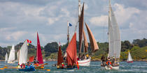 © Philip Plisson / Pêcheur d'Images / AA38507 La semaine du Golfe 2015 - Photo Galleries - Morbihan [The gulf of the]
