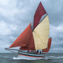 © Philip Plisson / Pêcheur d'Images / AA38334 La semaine du Golfe 2015 - Photo Galleries - Morbihan [The gulf of the]