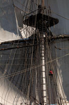 © Philip Plisson / Pêcheur d'Images / AA38653 L'Hermione at sea - Photo Galleries - Monohull