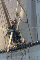 © Philip Plisson / Pêcheur d'Images / AA38661 L'Hermione at sea - Photo Galleries - Monohull