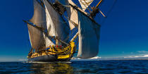 © Philip Plisson / Pêcheur d'Images / AA38662 L'Hermione at sea - Photo Galleries - Monohull