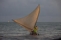 © Philip Plisson / Pêcheur d'Images / AA39069 Jangaderos - Photo Galleries - Fishing vessel