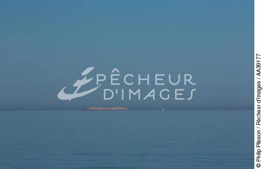 - © Philip Plisson / Pêcheur d'Images / AA39177 - Photo Galleries - Sailing boat