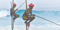 © Philip Plisson / Pêcheur d'Images / AA39463 Fishermen on a stick in Sri Lanka - Photo Galleries - People