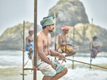 © Philip Plisson / Pêcheur d'Images / AA39467 Fishermen on a stick in Sri Lanka - Photo Galleries - People