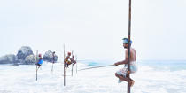 © Philip Plisson / Pêcheur d'Images / AA39480 Fishermen on a stick in Sri Lanka - Photo Galleries - People