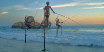© Philip Plisson / Pêcheur d'Images / AA39498 Fishermen on a stick in Sri Lanka - Photo Galleries - People