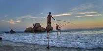 © Philip Plisson / Pêcheur d'Images / AA39499 Fishermen on a stick in Sri Lanka - Photo Galleries - People