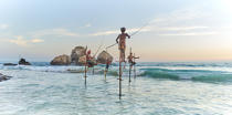 © Philip Plisson / Pêcheur d'Images / AA39500 Fishermen on a stick in Sri Lanka - Photo Galleries - People