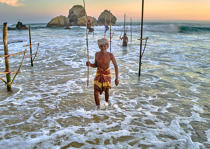 © Philip Plisson / Pêcheur d'Images / AA39510 Fishermen on a stick in Sri Lanka - Photo Galleries - People