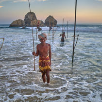 © Philip Plisson / Pêcheur d'Images / AA39509 Fishermen on a stick in Sri Lanka - Photo Galleries - People