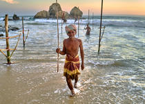 © Philip Plisson / Pêcheur d'Images / AA39511 Fishermen on a stick in Sri Lanka - Photo Galleries - People