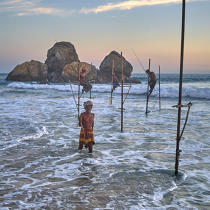 © Philip Plisson / Pêcheur d'Images / AA39503 Fishermen on a stick in Sri Lanka - Photo Galleries - People