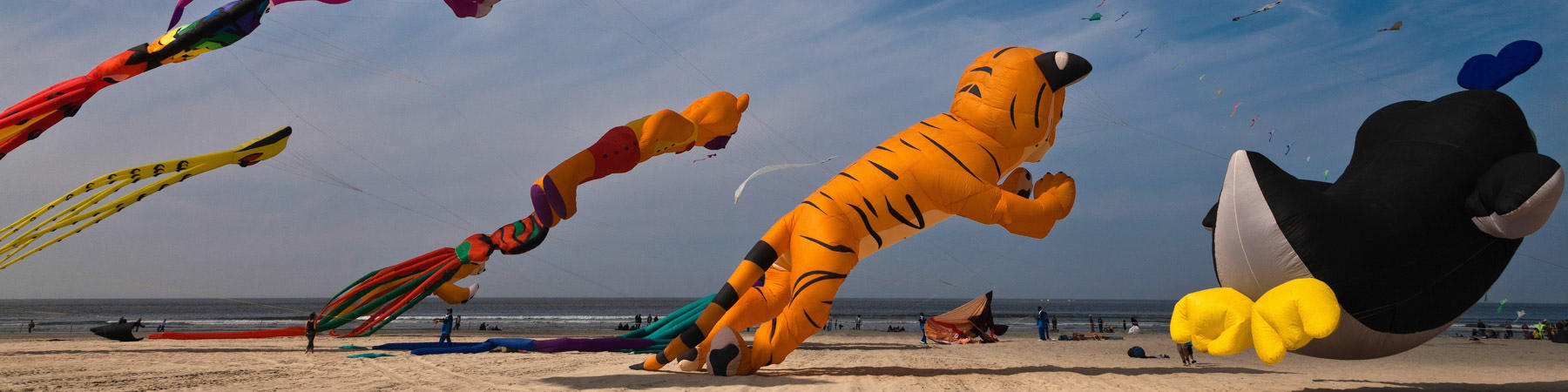 International Meeting of Kite in Berck-sur-Mer. - Photo Plisson